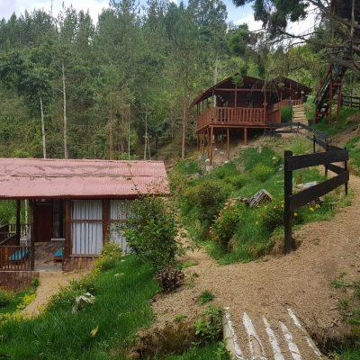 habitaciones el bosque